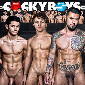 Studs And Gay Porn Stars
